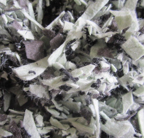 copeaux-geotextile-noir-gris-vert