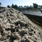 fibres sable